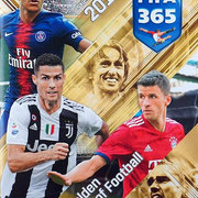 2019 Panini FIFA 365 The Golden World Of Football Sticker Collection