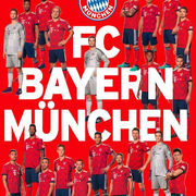 2018-19 Panini FC Bayern Munchen Stickers Cards Collection