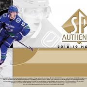 2018-19 SP Authentic Hockey